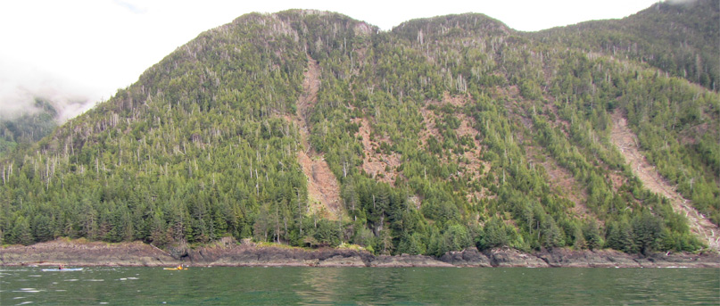 Evidence of landslides on the west side of Hibben Island.
