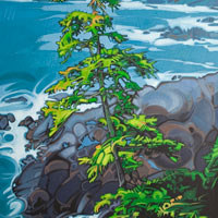 "Link to full size image of ""Wild Pacific Tree - Two"""